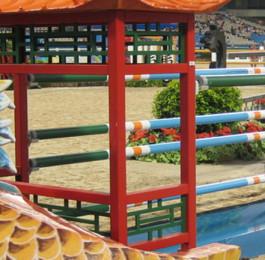 Banner GFK Reitsporthinternisse