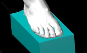 3D Modell - Fuß