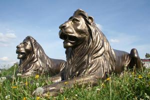 bronze löwen